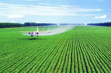 十三五规划纲要:推进农业现代化