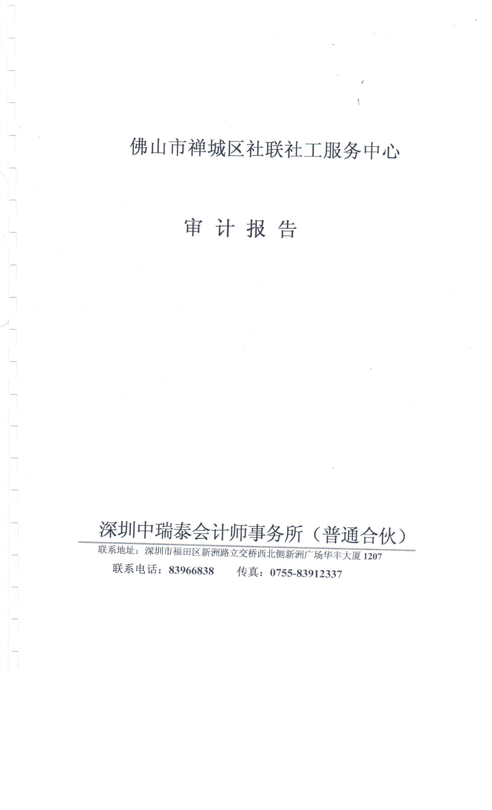 2013年财务审计报告