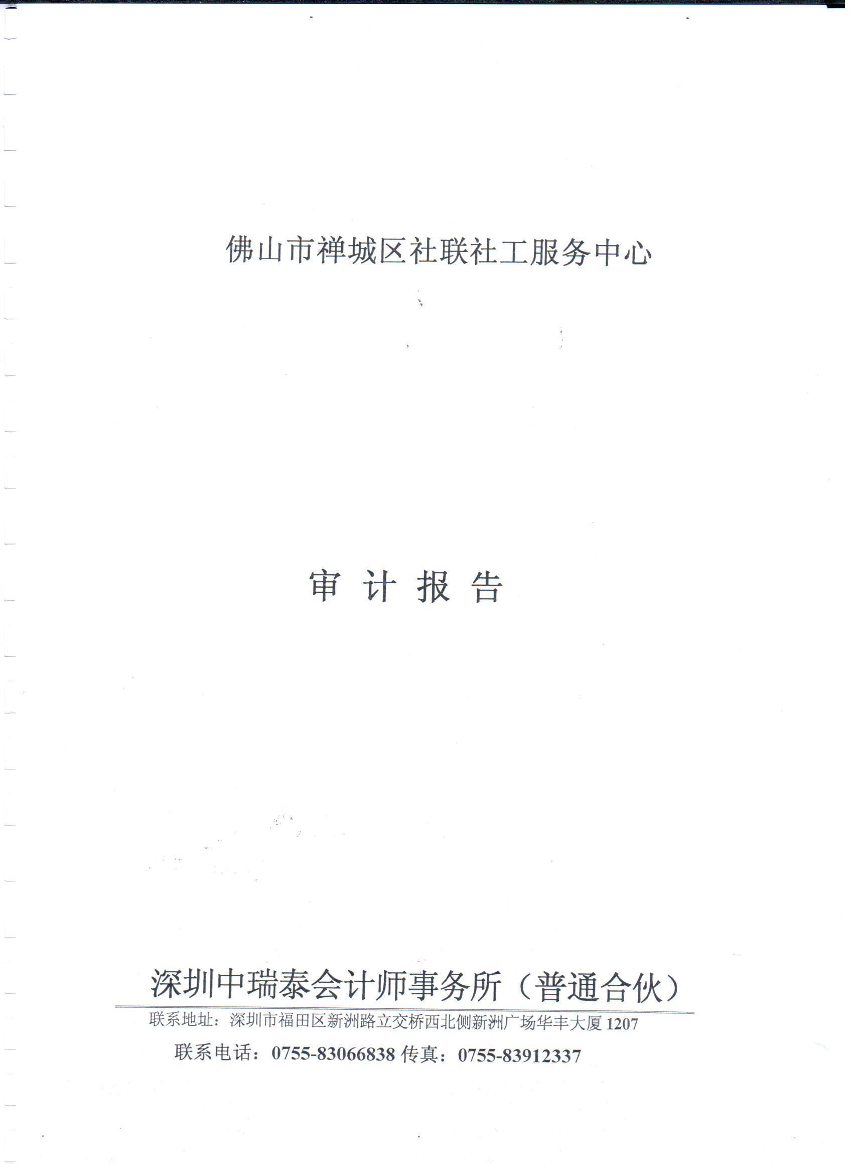 2015年财务审计报告