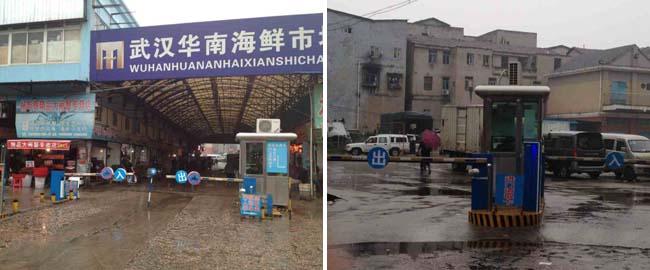 武汉华南海鲜市场