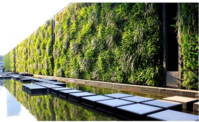 浅析立体绿化的寄义以及必要性