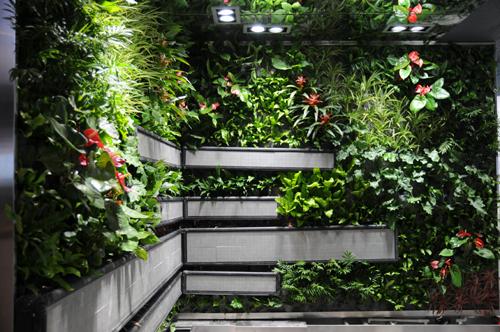 解说立体绿化的一样平常保护流程