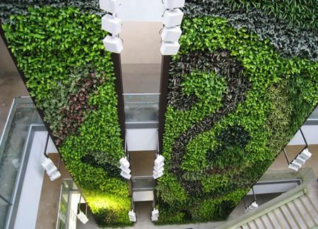 简述垂直绿化的观点及感化