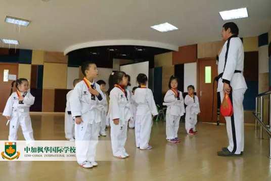 中加枫华幼儿园跆拳道:三岁孩子的格斗动作,我给满分!