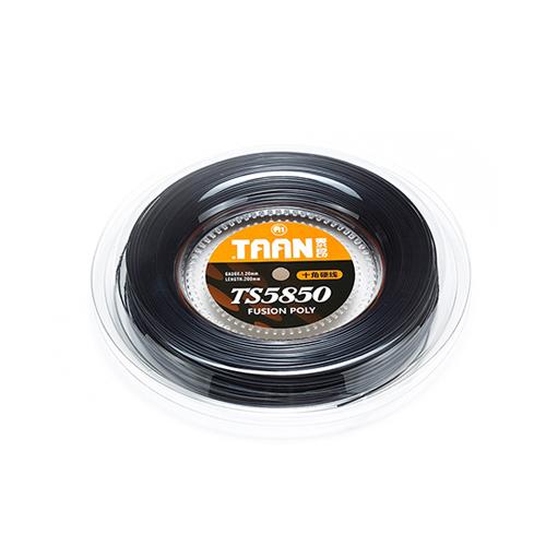 TS5850 十角硬色