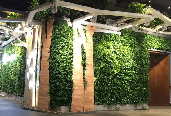 立体绿化――让修建布满活力