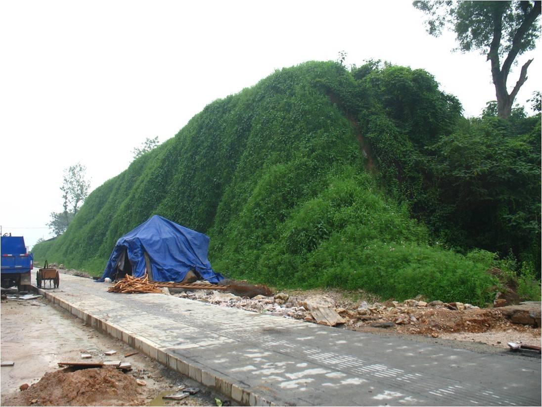 边坡生态防护