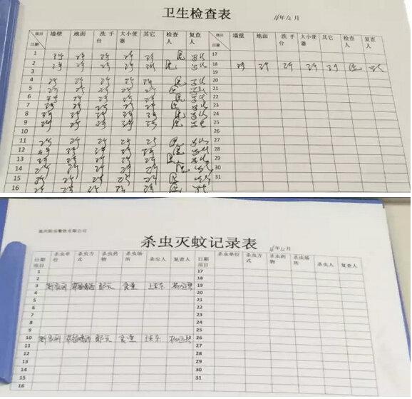 幼儿园植物观察记录表格