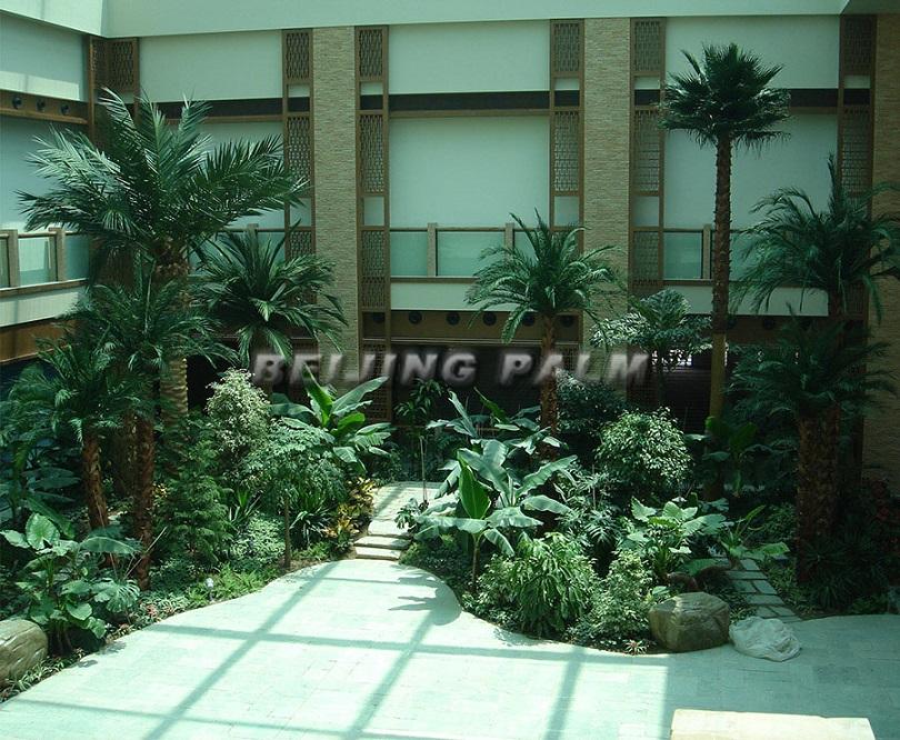 Beijing li garden villa - preserved indoor palm - Beijing Palm ...