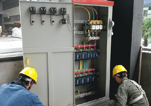 洋湖生态湿地修复和保育工程二期(展示区)10KVA配电增容工程