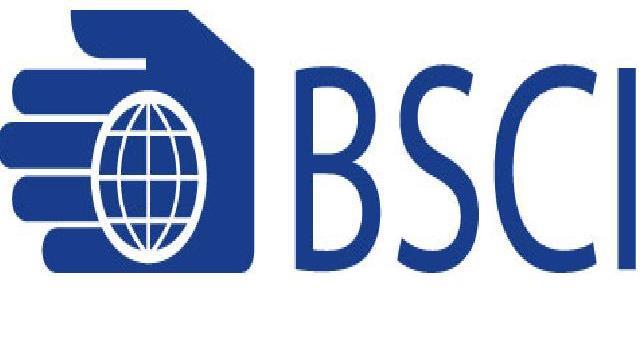 社会责任类体系服务:BSCI