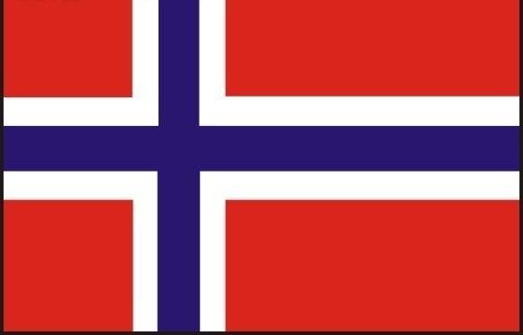 挪威互惠生