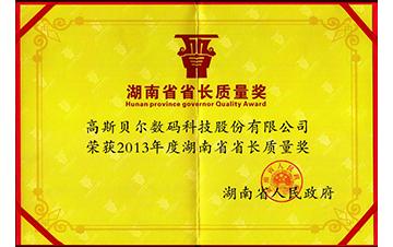 2013省长质量奖