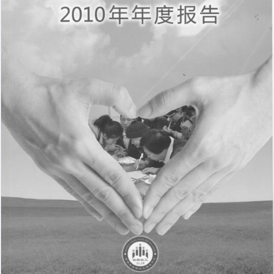 2010年年度工作报告