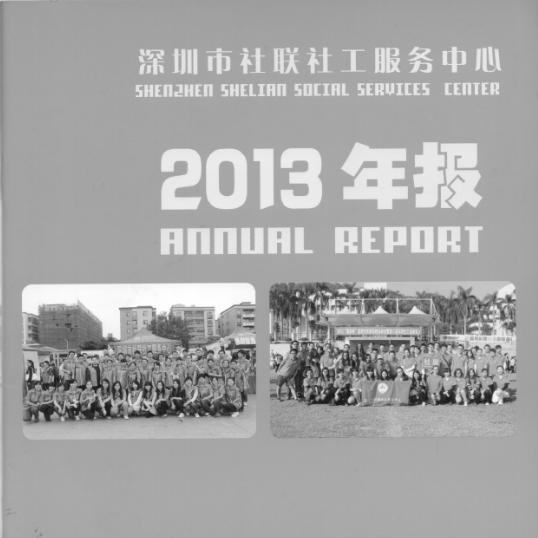 2013年年度工作报告