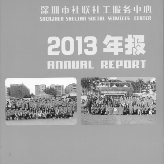 2013年年报