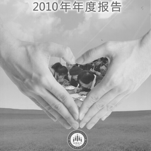 2010年年报