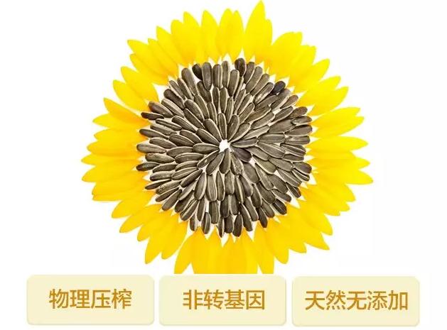 康朵压榨葵花籽油,为健康加油!