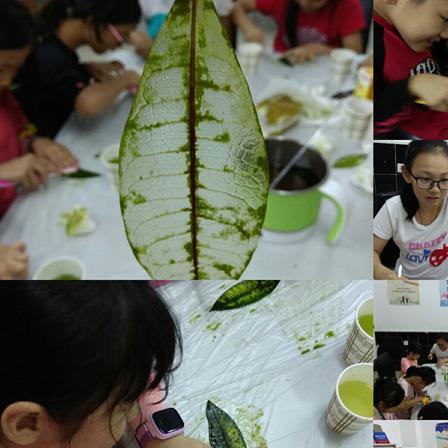 """组织了""""奇思妙想我最棒""""儿童科学教育小组第六节——叶脉标本制作活动"""