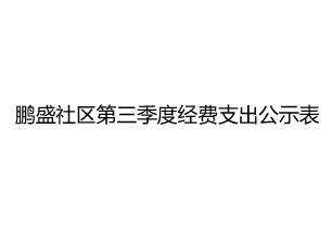 鹏盛社区第三季度经费支出公示表