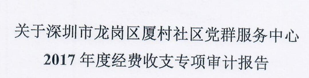 2017年审计报告(夏村)