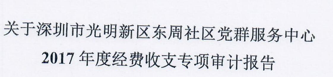 2017年审计报告(东周)