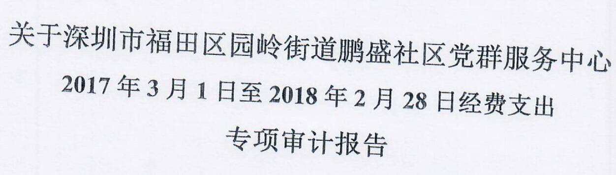 2017年审计报告(鹏盛)