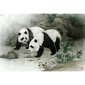 王申勇-谐游