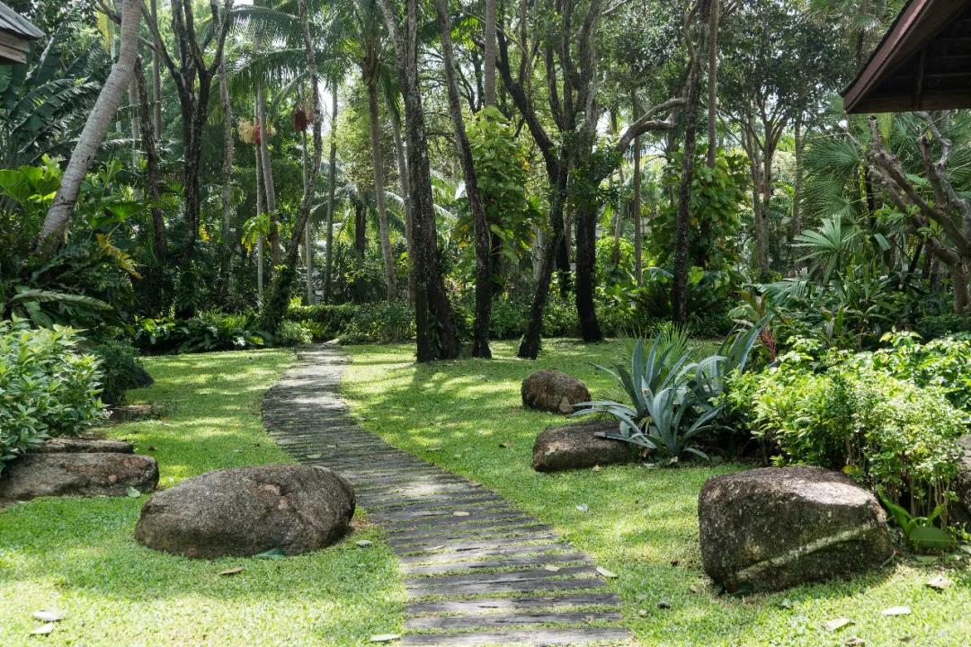 园林绿化工程施工五大细节