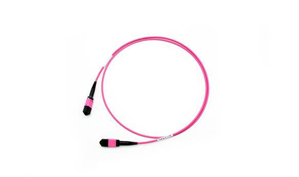 24F MPO-MPO Patch cable