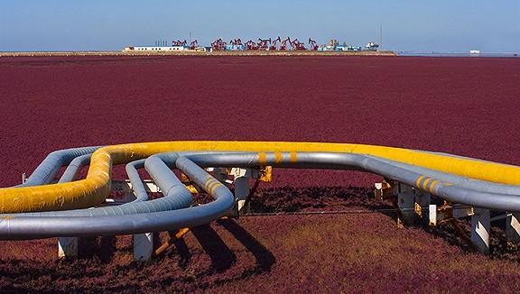 国家油气管网公司或于8月挂牌,组建模式参照中国铁塔