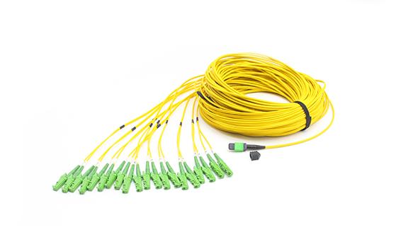 24F MPO- E2000/APC Standard harness Cables