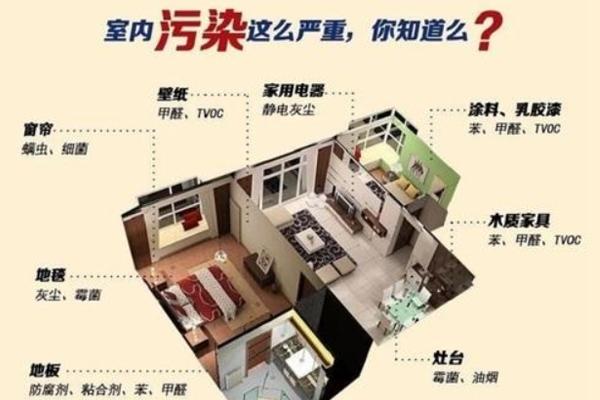森家环保小课堂:为何会造成室内空气污染?特性是什么?
