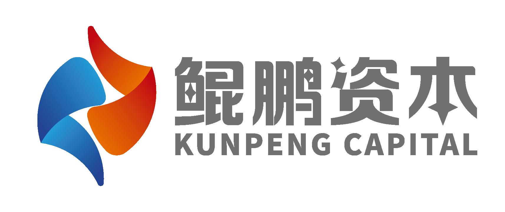 深圳市鲲鹏股权投资管理有限公司1