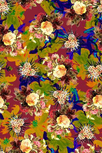 抽象叠加植物花朵