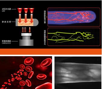 指静脉生物识别技术简介