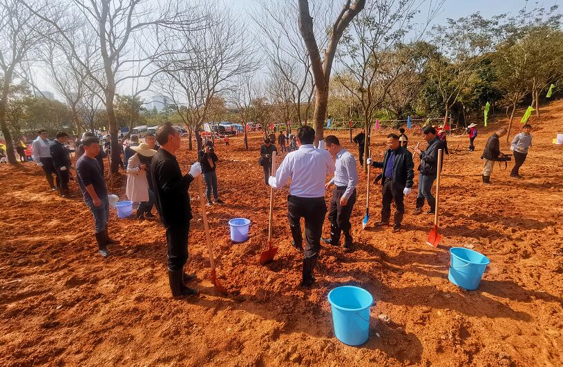 """塑造""""生态南山"""" 城基生态积极响应南山区全民义务植树节活动"""