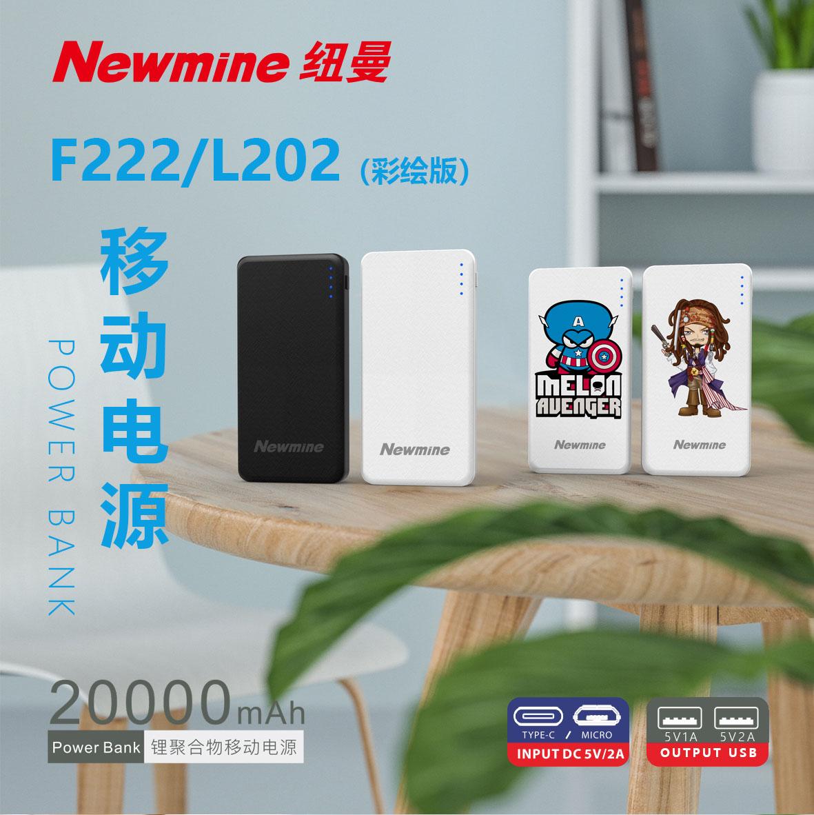 L202 聚合物20000mAh/彩绘版