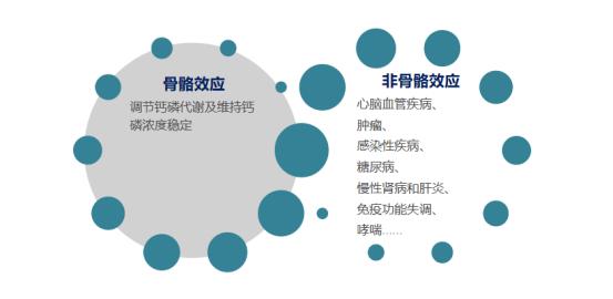 25-羟基维生素D测定试剂盒(荧光免疫层析法)