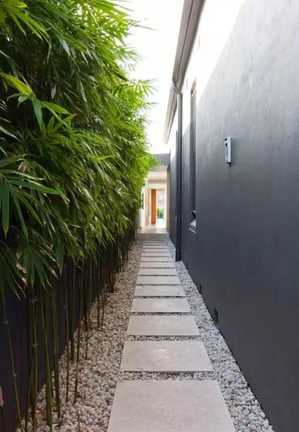 别墅庭院设计中对竹子的常用9大设计手法