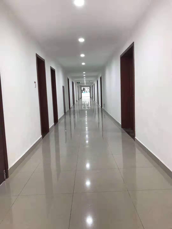 重庆市社科院办公楼改造装修装饰亿博开户竣工验收