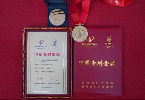 """和成显示喜获""""第二十届中国专利金奖"""""""