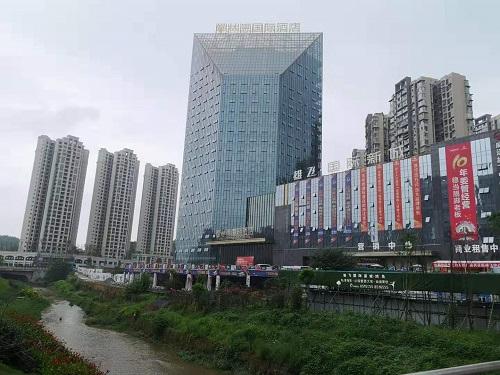 总公司领导赴威远参加林恩国际酒店项目协调会