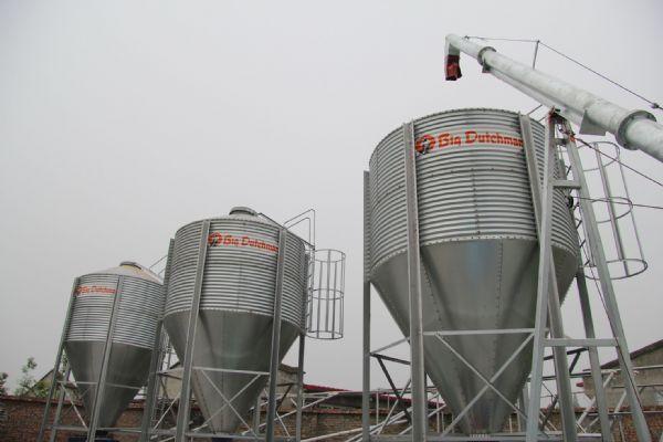 猪场设施-自动喂料系统