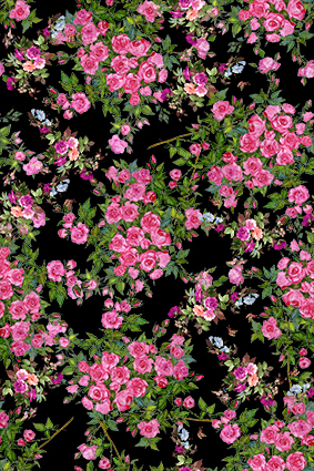 绿色枝叶红花坛