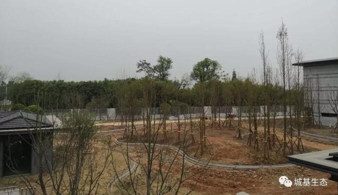 厉兵秣马战金堂,坚定执着树标杆,港中旅温泉度假区项目有序推进