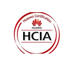 Huawei HCIA-HNTD with LABS - Intermediate level