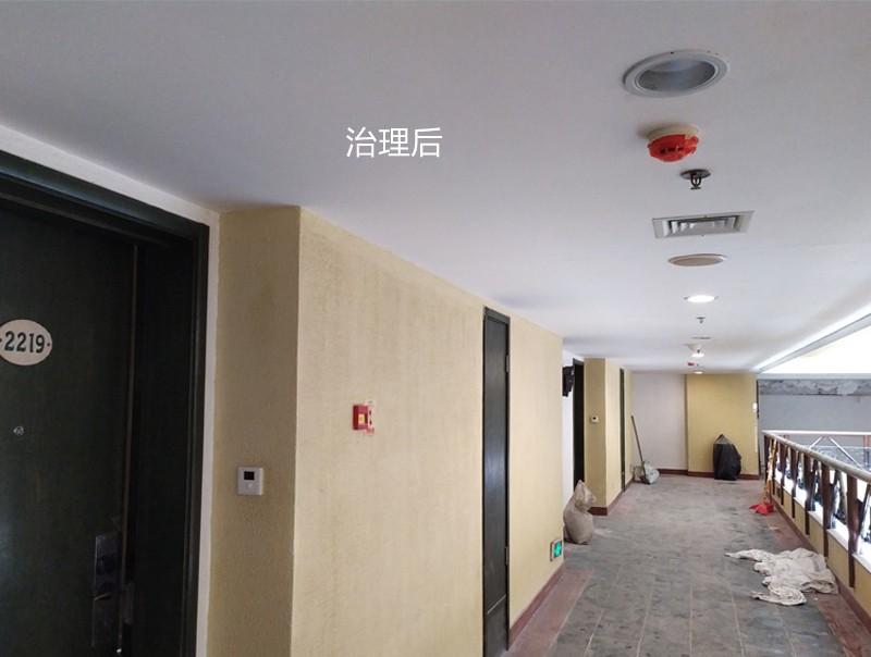 广州长隆酒店祛霉除霉