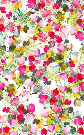 渐变花瓣色彩花坛