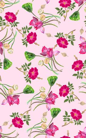 莲藕手绘荷叶花